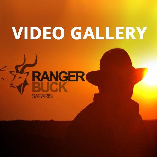 Ranger Buck - Video Gallery
